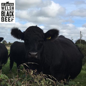 St Davids Welsh Black Beef